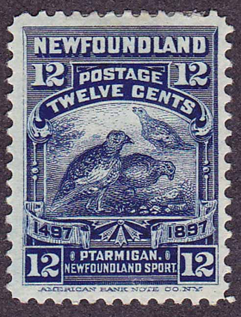 Newfoundland SG 74 issued in 1897